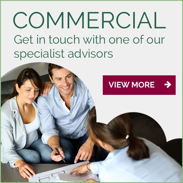 Commercial advisor