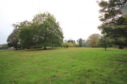 ATTRACTIVE GRASSLAND AND MATURE WOODLAND FOR SALE